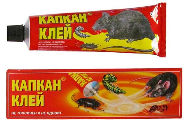 клей для ловли мышей состав